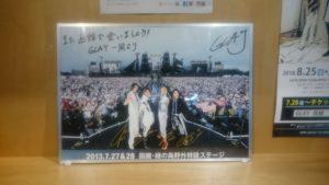 2013年函館緑の島でのGLAYライブの写真