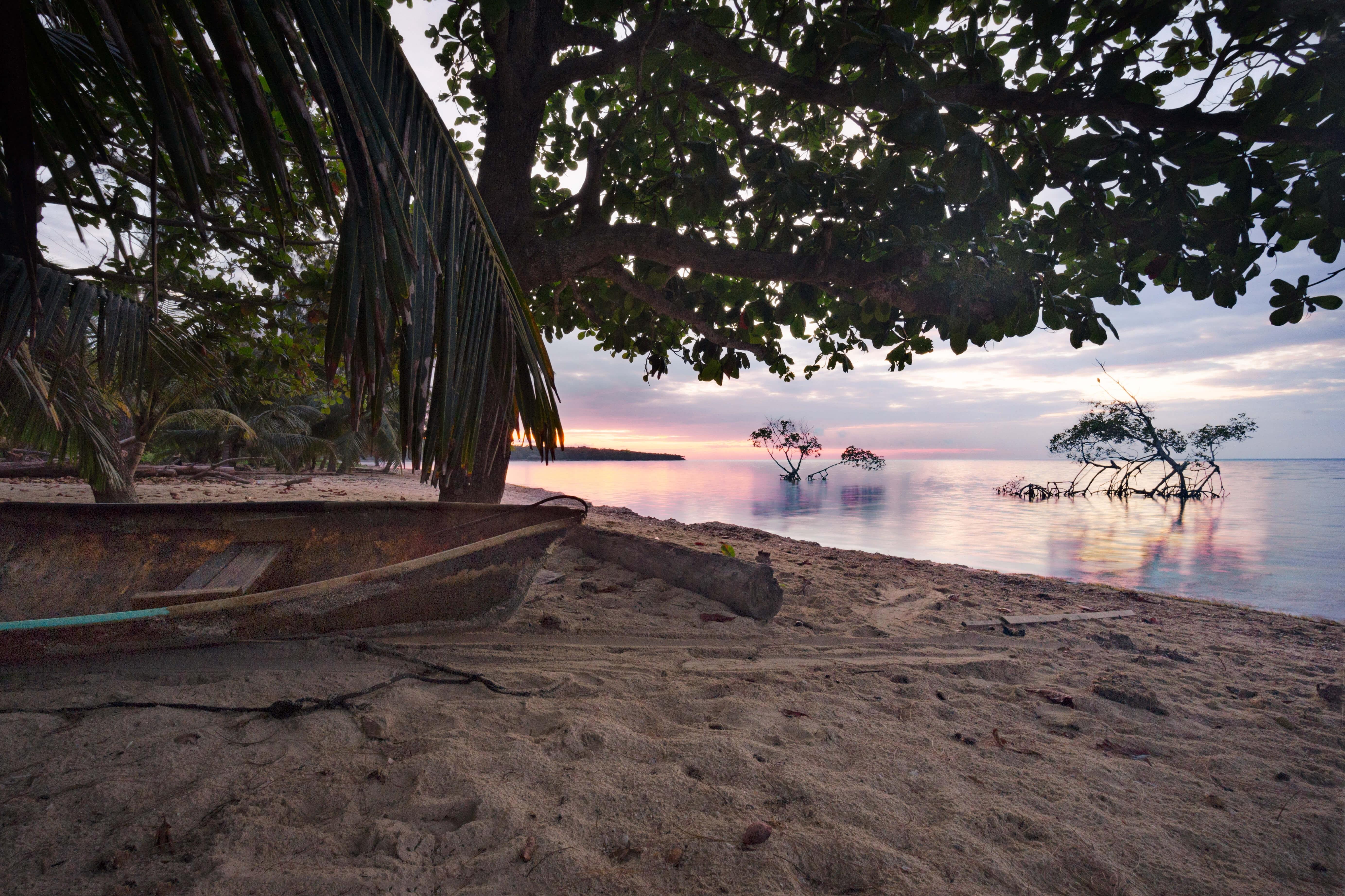 沖縄のマングローブカヌーがおすすめ!幼児から子供も一緒に体験可能!