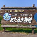 小樽観光で小樽(おたる)水族館へ!おすすめ理由や口コミをブログで紹介!