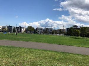 札幌明日風公園の芝生