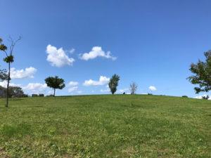 札幌明日風公園の芝生から見上げた空