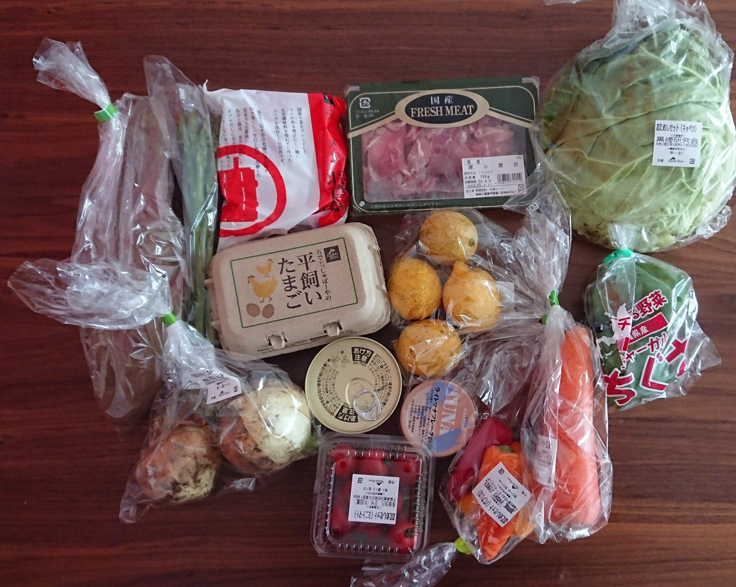 札幌や北海道で利用できる食材宅配サービスはらでぃっしゅぼーやお試しセット